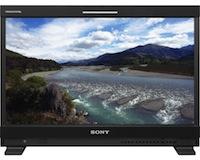 Sony PVM Monitor 24